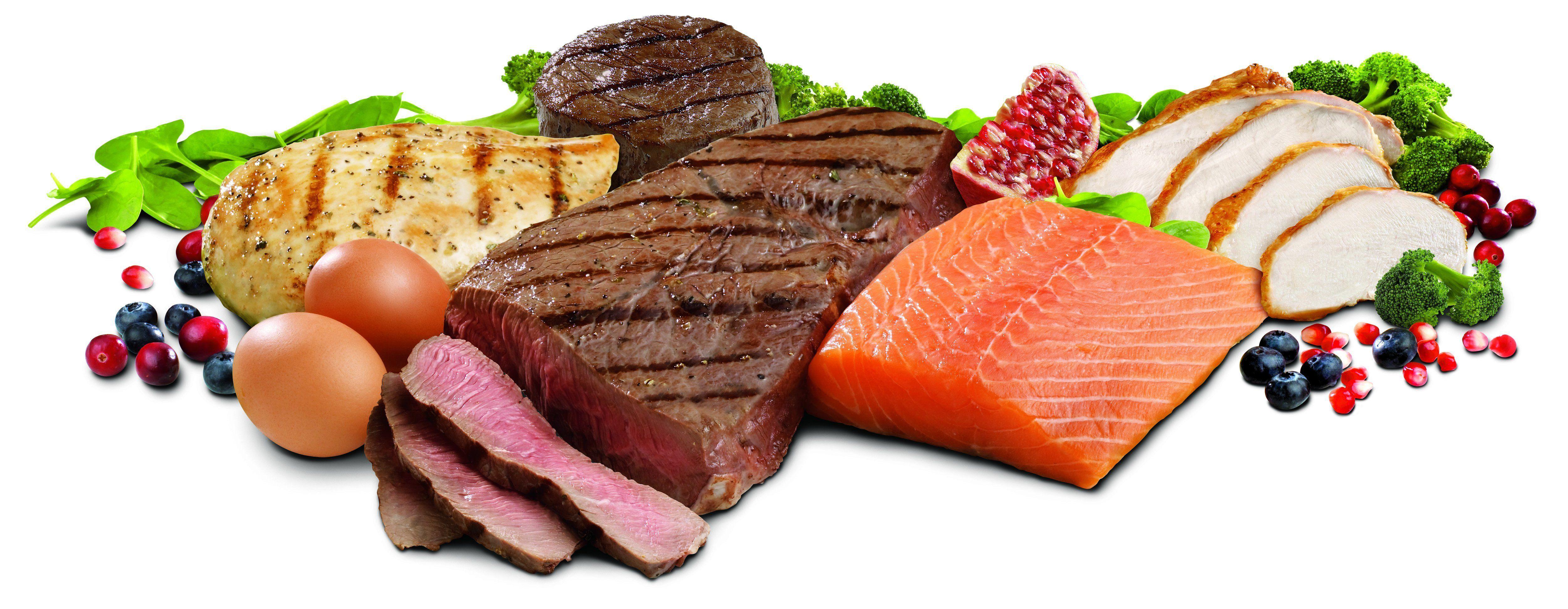 Alimentação rica em proteínas é fundamental para minimizar a perda muscular